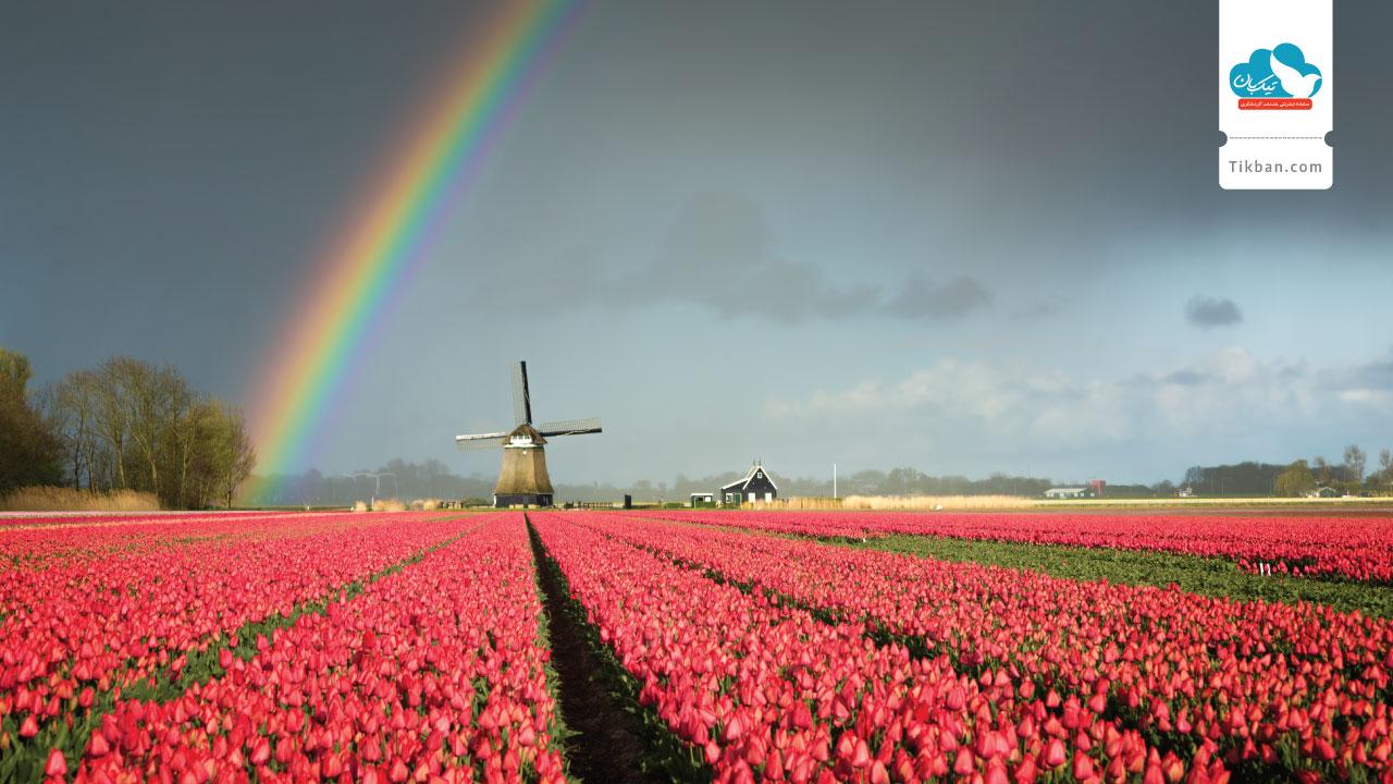 بلیط هواپیما آمستردام